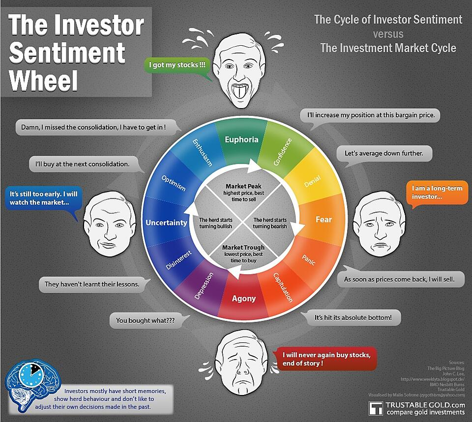 The Investor Sentiment Wheel Infographic
