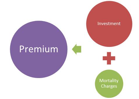 ULIP Premium