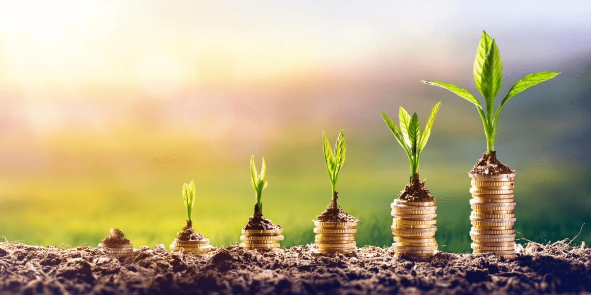 Mutual Fund Investment in UAE